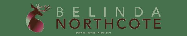 Belinda Northcote Art and Design Studio